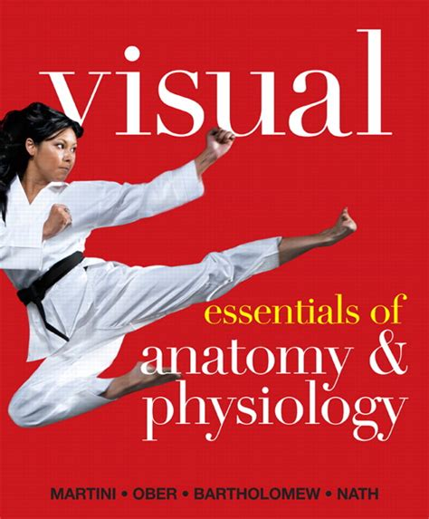 essentials of human anatomy physiology plus mastering a p with pearson etext access card package 12th edition martini ober bartholomew nath visual essentials of