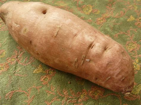are sweet potatoes a root vegetable root vegetables 101 a primer on the most underappreciated
