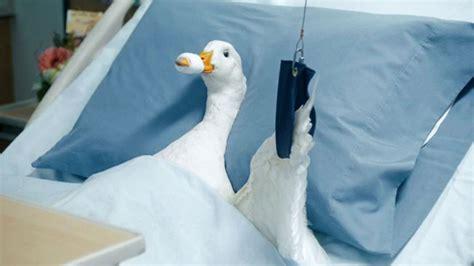 spot  aflac duck  hurt   silent