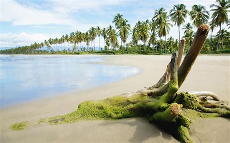 nature world best sea beach wallpaper argentina