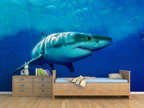 Sea Life Wall Murals animal wall murals for the home