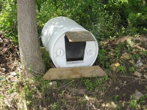 dog house barrel dogs dogs dogs create a dog house out of a 55 gal barrel dog house pinterest
