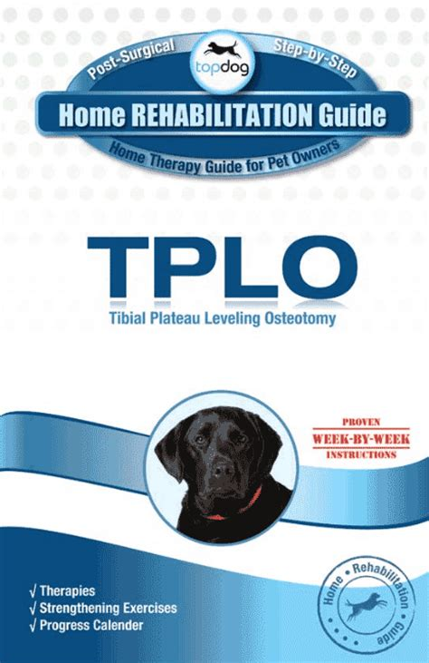 Detox Recovery Powder Dr Jeff Vet Recommended For Liver by Tplo Home Rehab Guide Topdoghealth