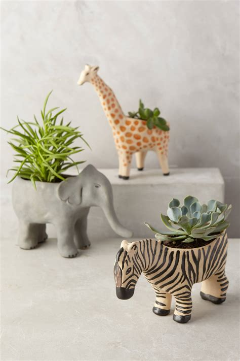giraffe planter animal succulent planter home decorating trends homedit