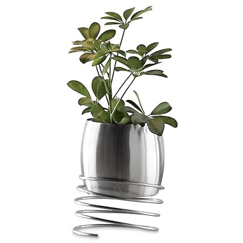 Stainless Steel Planters Uk stainless steel planters tips for you front yard