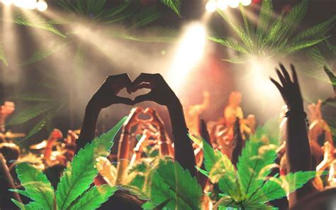 best festivals for best cannabis strains for festivals green daily