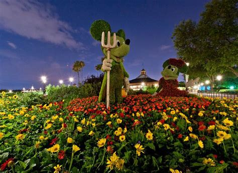 17 Best Images About Epcot International Flower Garden Disney Flower And Garden Festival