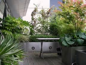 Indonesian Home Decor V Di Vaso Come Coltivare Gli Arbusti Ornamentali