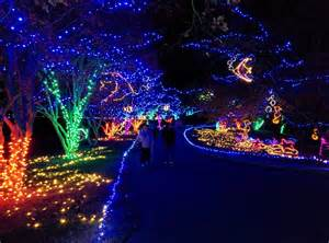 Norfolk Botanical Garden, Norfolk, Virginia   Million Bulb Walk