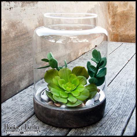 Online Home Decor Items Plant Terrariums For Sale Shop Terrarium Kits For Plants