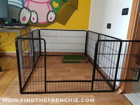 recinto cani interno recinto per cani da interno la nostra guida e tanti consigli