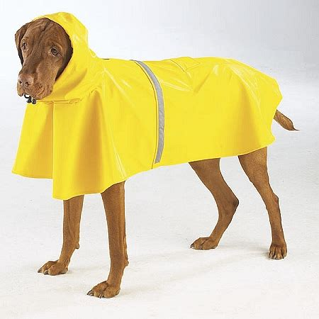 jackets for dogs guardian gear jacket for dogs yellow w reflective stripe