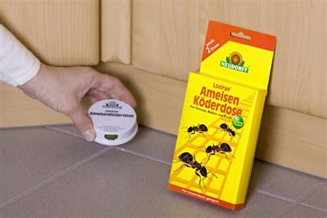 Hilfe Gegen Ameisen Im Garten 3360 by Ameisen Bek 228 Mpfen Die N 252 Tzlichen Sch 228 Dlinge Allgemein