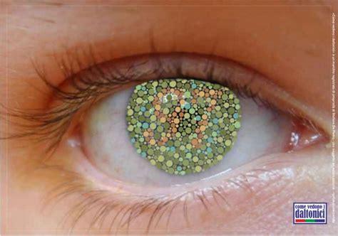 test per i daltonici come vedono i daltonici visitgenoa it