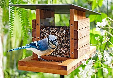 7 Pretty Bird Feeders by Diy Bird Feeder Cing