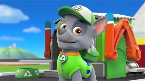 what of is rocky from paw patrol paw patrol character spot rocky