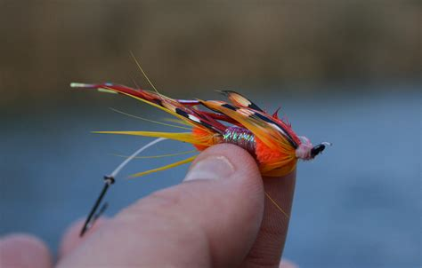 how to swing flies for steelhead snapshots troutsource