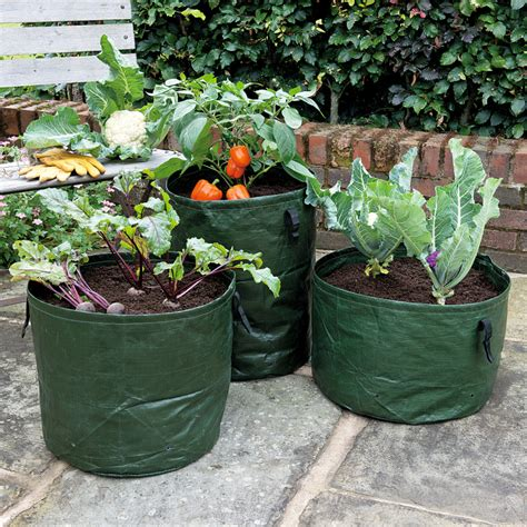 Vegetable Planters Vegetable Planters Pack Of 3 Gardman Collection
