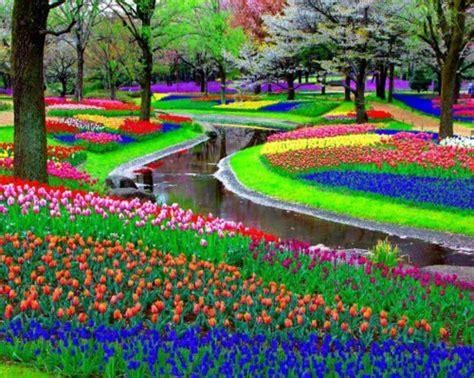 colorful flower garden colorful garden design and garden decor the world s