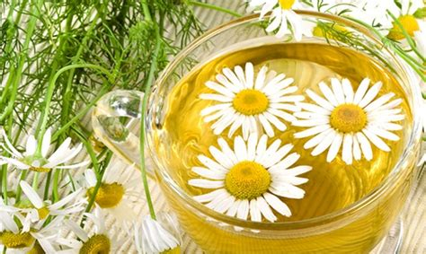 alimenti contro l acidità contro l acidit 224 di stomaco quali sono i rimedi naturali e