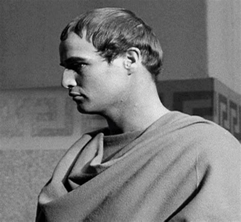 Brando Has A Something For The by Marlon Brando At Least He Has A Nose Gif By Maudit