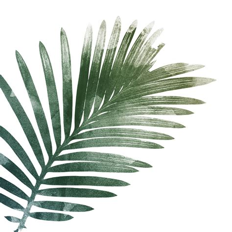 printable leaf art palm leaf art print by georgie st clair