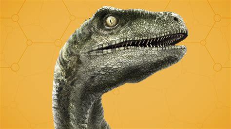 what does velociraptor eat it tyrannosaurus rex jurassic world