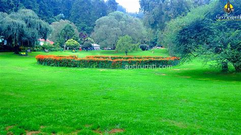 Ooty Botanical Gardens Ooty Botanical Garden Timings Ticket Cost Opening And Closing Hours