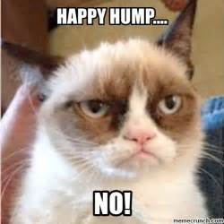 Hump Day Memes - hump day meme 28 images happy hump day meme freezing
