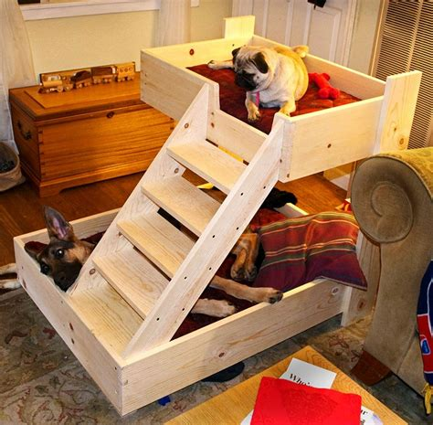 beds for dogs dog bunk beds and their variations