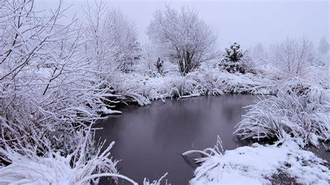 foto in foto s de sneeuw vandaag in overijssel