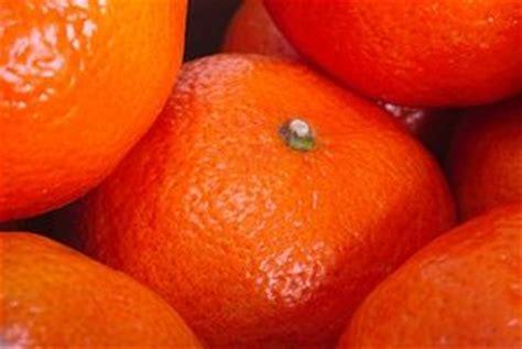 acido citrico per alimenti reazioni allergiche a acido citrico itsanitas