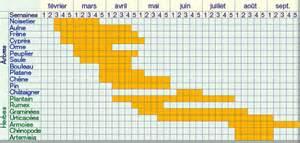 le calendrier du potager mois par mois photos de
