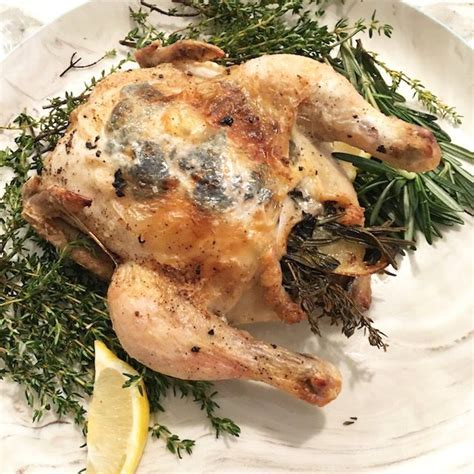 Sunday Dinner Pan Roasted Chicken With Black Truffle Risotto by 17 Best Images About Chicken And Some Turkey On