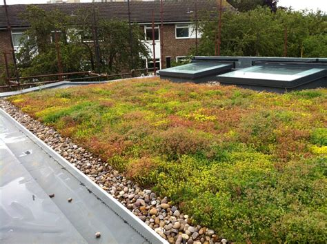 green roof df roofing waterproofing solar green roofs