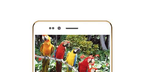 Bell Freedom 251 Freedom 251 Is A 4 Inch Android Smartphone With Processor That Costs Less Than 4
