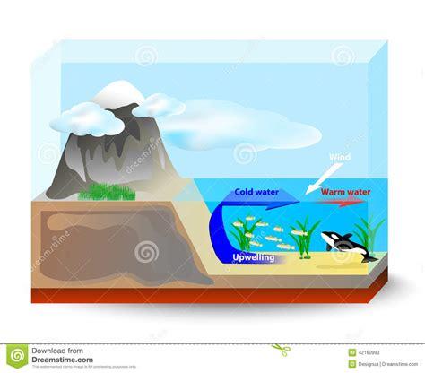 Coastal Floor Plans upwelling currents stock vector image 42160993