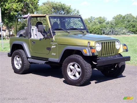 pearl jeep wrangler 1997 citron pearl jeep wrangler sport 4x4 33548843 photo