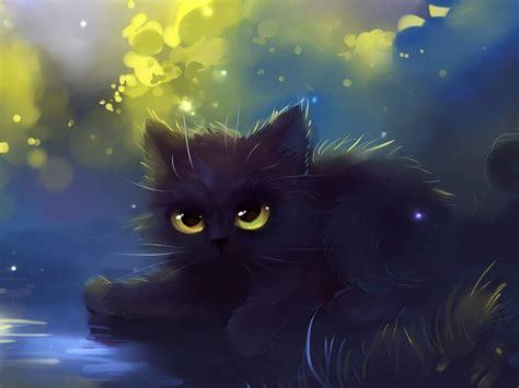 Cat Wallpaper (Cartoon, Eyes, Black) HD Cat Wallpaper