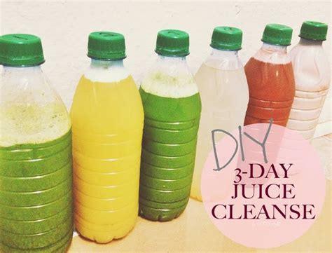 Thé Glacé Detox by 1000 Ideas About Blueprint Cleanse On Juice