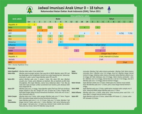 Panduan Lengkap Pelayanan Kb Terkini Penerbitnumed tanyadok jadwal imunisasi rekomendasi idai 2011