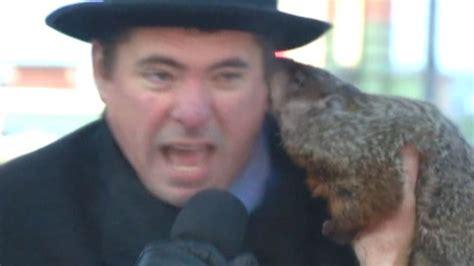 groundhog day jimmy jimmy the groundhog bites mayor in wisconsin news