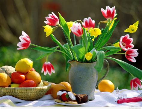 awesome spring wallpapers  flowers