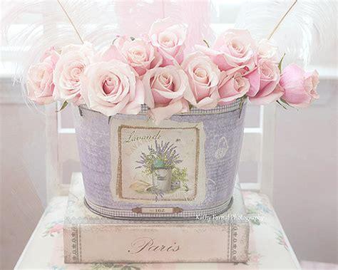 rosen kunstdrucke fotografie rosa pastell rosen paris rosa