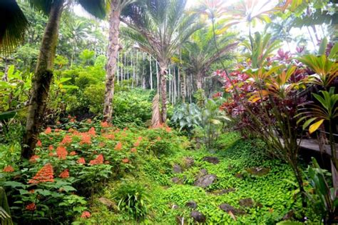 best botanical gardens hawaii best botanical gardens on