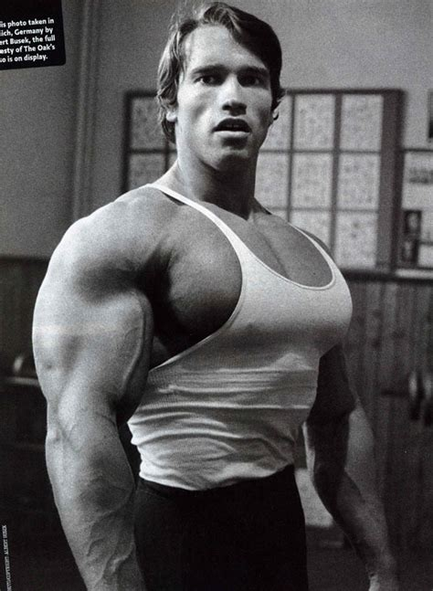arnold bench max training for size a quick guide aesthetics cast