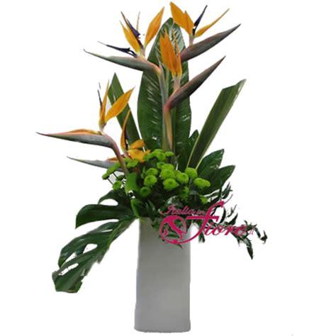 fiori sterlizie italia in fiore comprare e inviare fiori