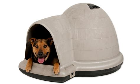 petmate large dog house petmate indigo dog house with microban for medium to extra large dogs groupon
