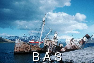 british antarctic survey photographic database