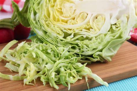 come cucinare i crauti crudi crauti come cucinarli e abbinarli agrodolce